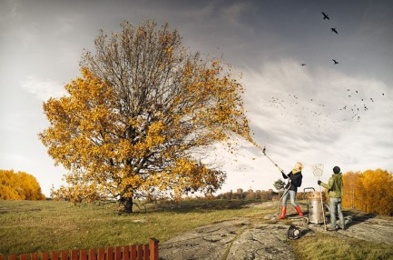 Erik Johansson - Helping fall