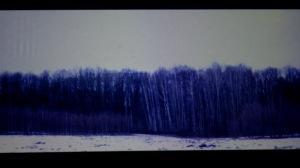 Skepto 2012 - http:// (foto di Marilena Riello)