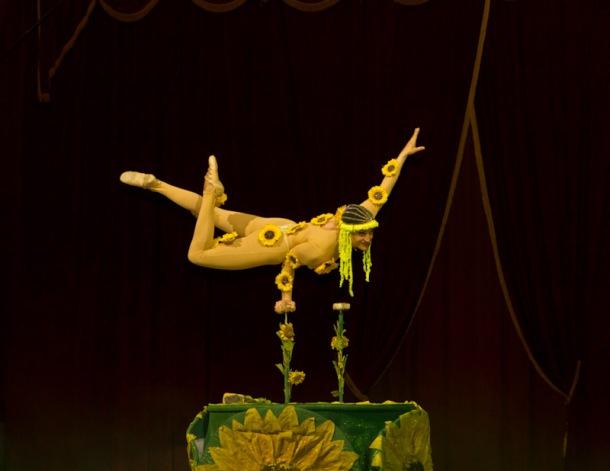 Marilena Ginevra Riello - Circo