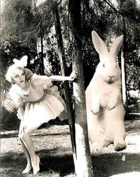 Alice si nasconde da un coniglio di Pasqua gigante