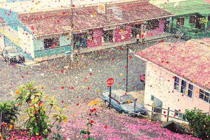 Pioggia di fiori in Costa Rica