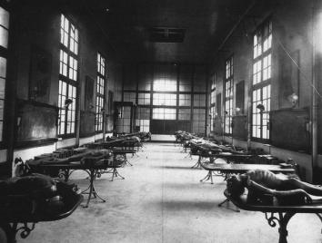 Istituto mentale, 1924
