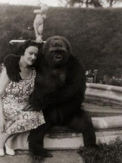 La signora E. Kenneth Hoyt e il suo Gorilla, National Geographic, 1940