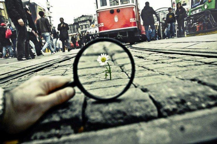 Scattodelfotografo turcoSalih Agir