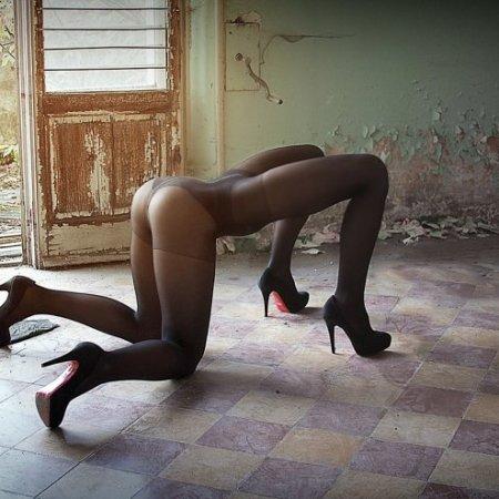 """""""Quadrupede""""del fotografo italianoCesare Longhi"""