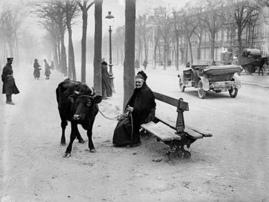 Una vecchia donna che fuggì la zona di guerra con la sua mucca, siede su una panchina in Amiens, Francia, 28 marzo 1918
