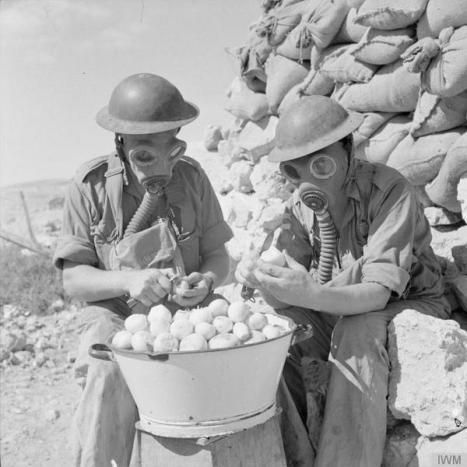 Soldati che indossano maschere antigas per pelare cipolle a Tobruk, ottobre 1941