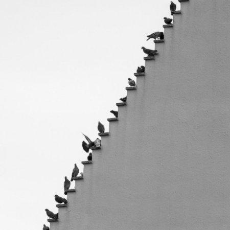 Scattodel fotografo Stefan Holl