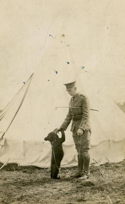 """L'Orso Winnipeg - ispirazione per """"Winnie the Pooh"""" qui con il tenente Harry Colebourn 1914"""