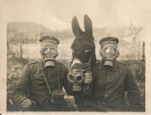 Una foto che mostra due soldati britannici e un asino che indossano maschere antigas per proteggersi dal gas di cianuro tossico utilizzato nei raid tedeschi