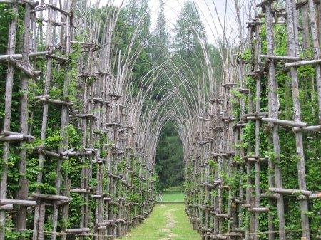 Arte Sella - Cattedrale Vegetale