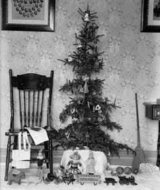 L'idea dell'albero di Natale sembra esser nata nella Germania medievale e probabilmente era una reliquia di una vecchia cerimonia celtica. I cristiani tedeschi portavano alberi nelle loro case