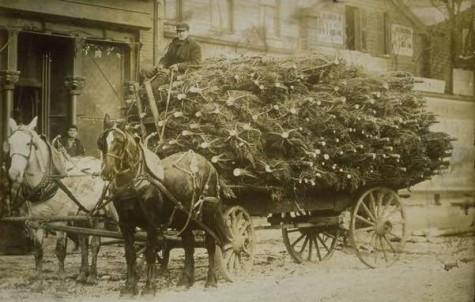 Carro di alberi di Natale, Hartford, ca. 1890 - Connecticut Historical Society and Connecticut History Online