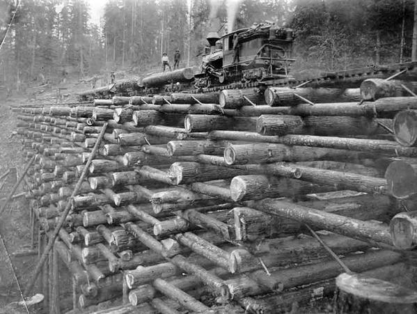 1900-1908, ponti ferroviari fatti di tronchi