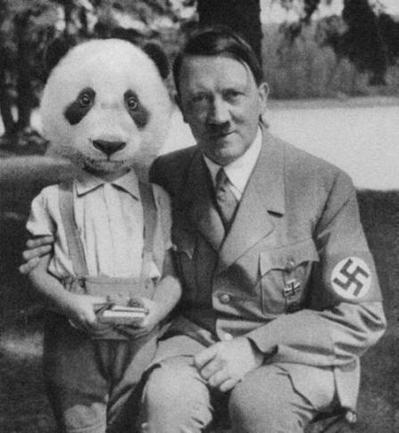 Panda e Hitler