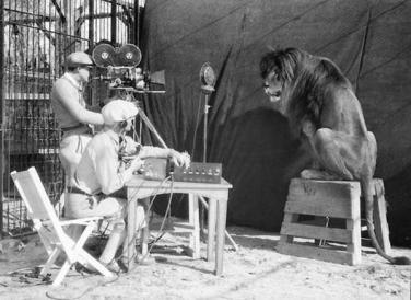 Registrazione del ruggito del leone della MGM (Leo), 1929