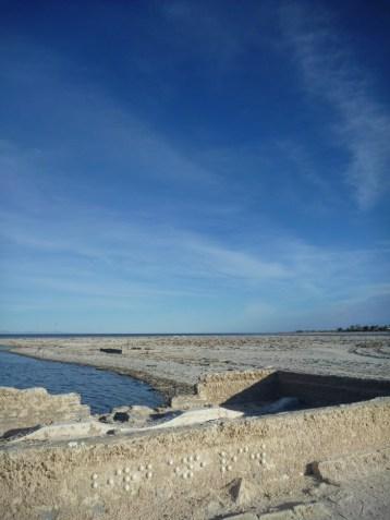 The Blind - Birds Eye View 2012