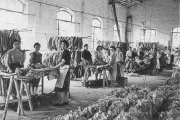 Donne operaie per la Giornata Internazionale della donna