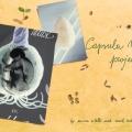 Capsula Mundi 8