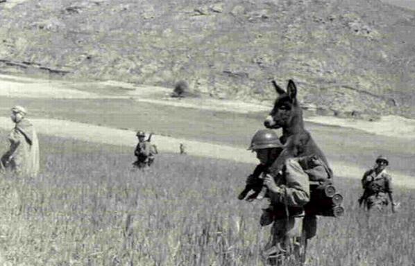 Un soldato che porta in giro un asino, circa 1940