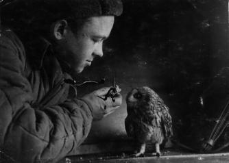 Soldato sovietico dà da mangiare a un gufo, seconda guerra mondiale