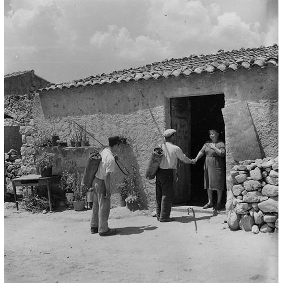 Suschitzky - Arrivo degli operai per la disinfestazione, 1950