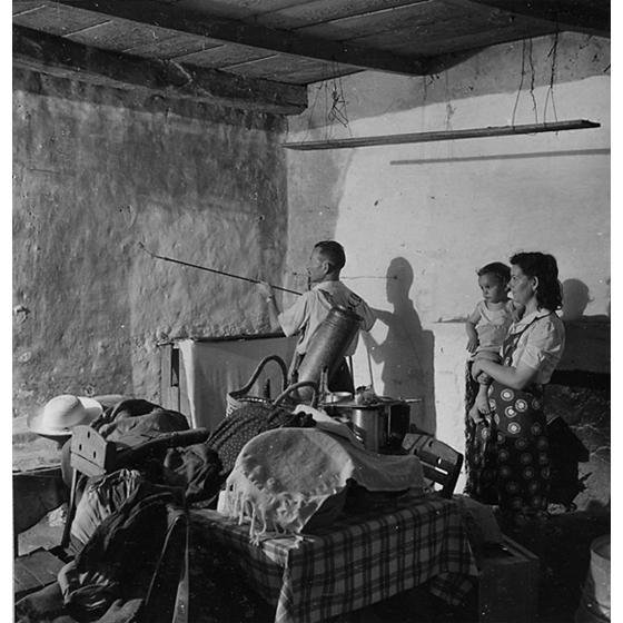 Suschitzky - Disinfestazione all'interno di una casa, 1950