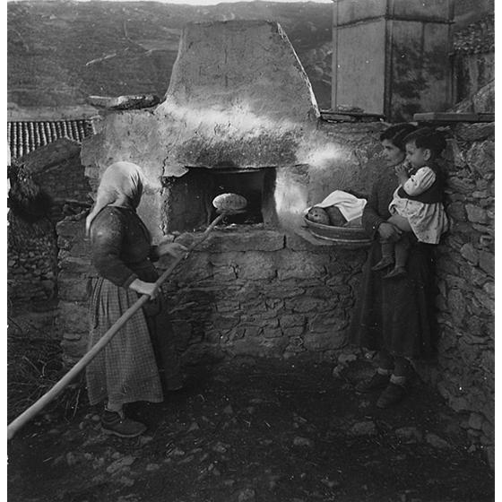Suschitzky - Goni, 1948