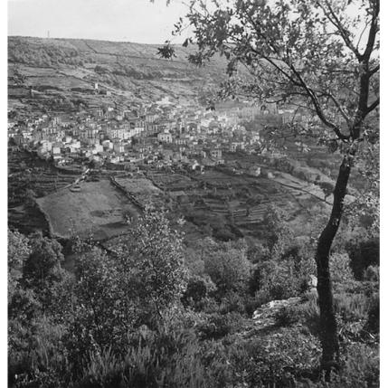 Suschitzky - Macomer, 1948
