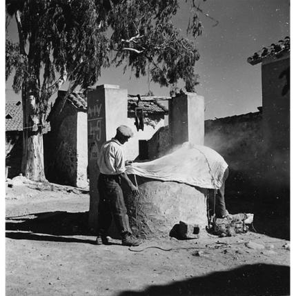 Suschitzky - Operazioni preliminari all'immissione di fumo in un pozzo per eliminare le zanzare adulte, 1950