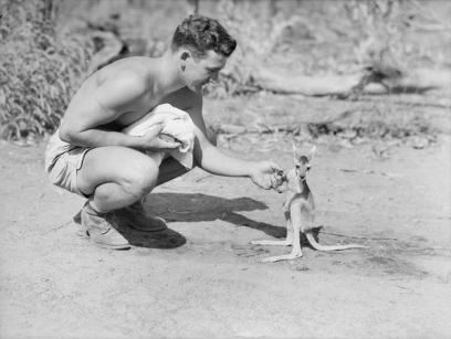 Un soldato americano in una base alleata avanzata, con il suo canguro domestico, 1942