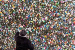 Tradizioni di Pasqua - Germania - l'albero delle uova colorate