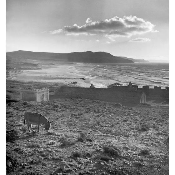 Werner Bischof - Sardegna 1950