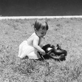 Una bambina gioca con un serpente indigo innocuo, circa 1950