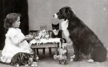 Il the pomeridiano con gli amici animali, circa 1900-1910
