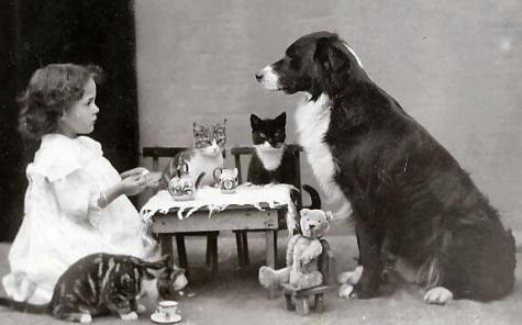 Il the pomeridiano con gli amici animali, circa 1900-1910