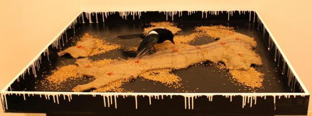 Christian Molin - Il ballo della Gazza Ladra (Pica-Pica dance)