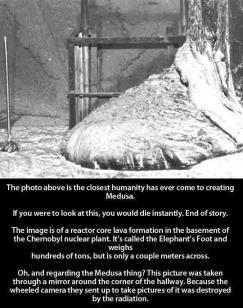 """""""La foto qui sopra è ciò di più simile che l'umanità abbia creato su Medusa. Se lo si dovesse guardare, si dovrebbe morire all'istante. Fine della storia. L'immagine è di una formazione lavica nel seminterrato della centrale nucleare di Chernobyl nocciolo del reattore. Si chiama piede dell'Elefante e pesa centinaia di tonnellate, ma è solo un paio di metri di diametro. Oh, e per quanto riguarda Medusa? Questa foto è stata scattata in uno specchio dietro l'angolo del corridoio. Perché la macchina fotografica su ruote che è stata mandata a scattare la foto è stata distrutta dalle radiazioni."""""""