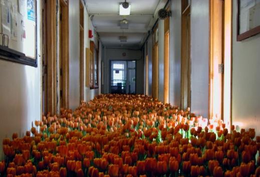 """""""Bloom"""" dell'artista statunitenseAnna Schuleit"""