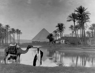 Oasi nel deserto (Giza, Egitto - 1917)