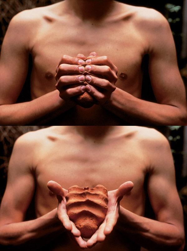 """Gabriel Orozco - """"My Hands are My Heart"""", 1991"""