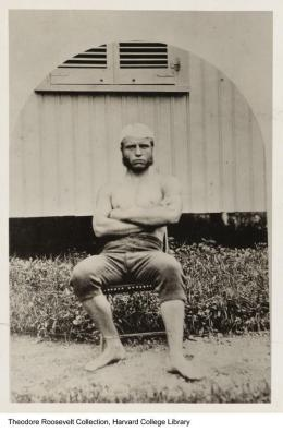 Theodore Roosevelt a 19 anni, Harvard College Library, 1877