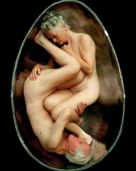 """Nest"" - Andreas Hetfeld"