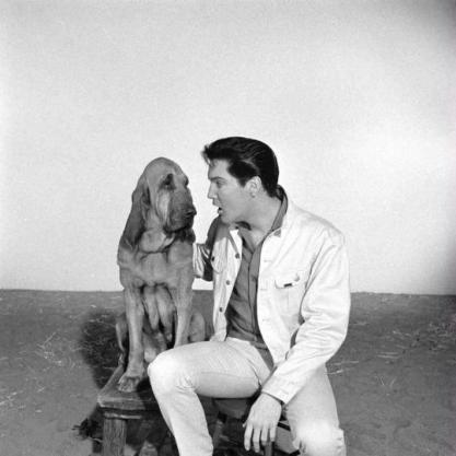 Elvis Presley, 1964