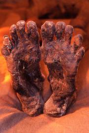 I piedi del faraone Ramses I