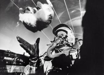Studi sugli effetti dell'assenza di peso su un gatto a 25.000', 1958