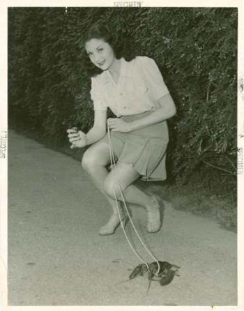 Una donna porta la propria aragosta da compagnia a fare una passeggiata durante gli anni 50