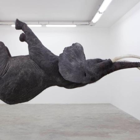 """""""Nasutamanus"""" (2012) by Daniel Firman"""