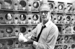 Lo psicologo americano B.F Skinner con uno dei suoi piccioni di laboratorio nel 1965