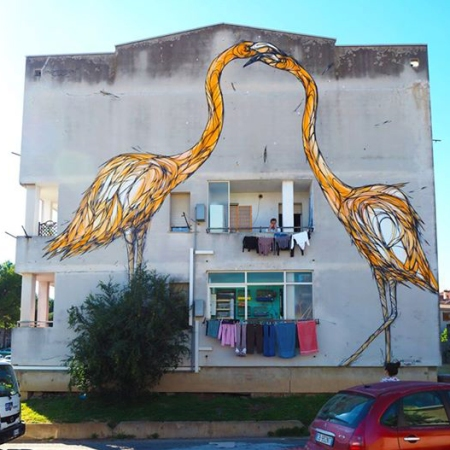 """I Fenicotteri Arancioni"" (Orange flamingos) by Dzia @ Cagliari x Is Murusu de Santa Teresa"